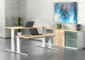 Leuwico iMove-S | Steh-Sitz-Schreibtisch DRV